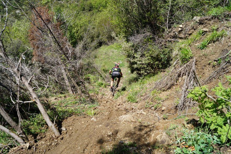 bike athlos tzoumerkon 2015 (59)