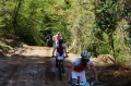 bike athlos tzoumerkon 2015 (15)