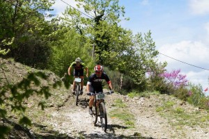 bike-athlos-tzoumerkon-2015-69