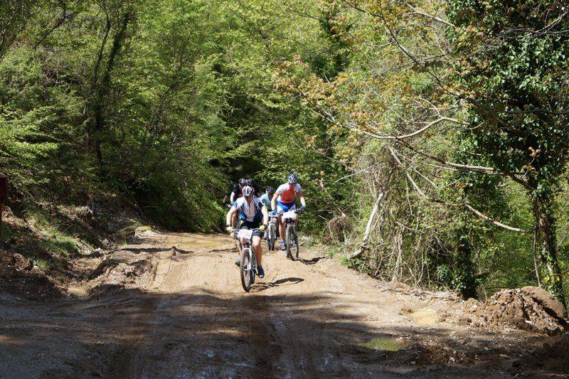 bike athlos tzoumerkon 2015 (20)