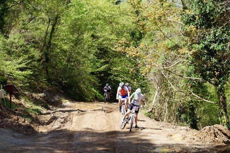 bike athlos tzoumerkon 2015 (32)