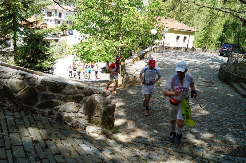 run athlos tzoumerkon 2015 (11)