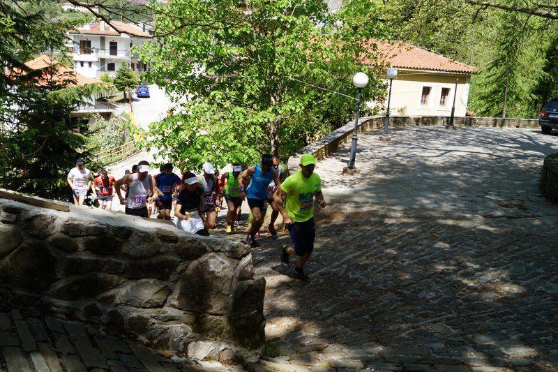 run athlos tzoumerkon 2015 (12)