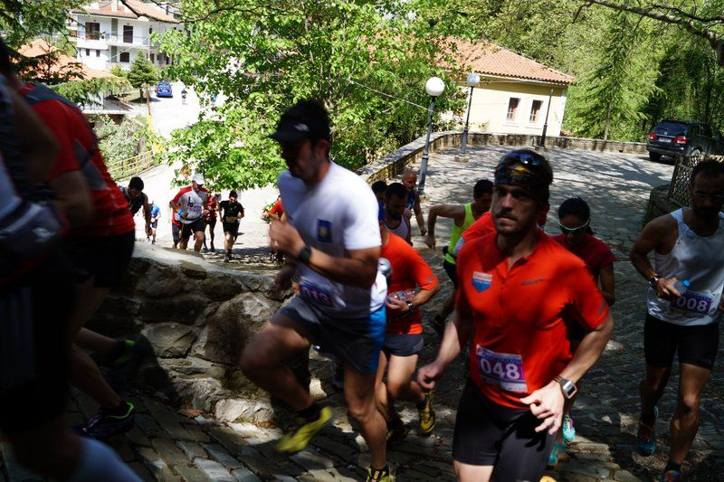 run athlos tzoumerkon 2015 (14)